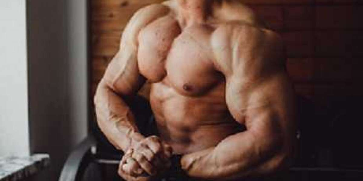 The Anabolic Evolution of Modern Bodybuilding